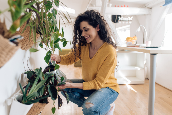 Beautiful young woman watering plants at home.